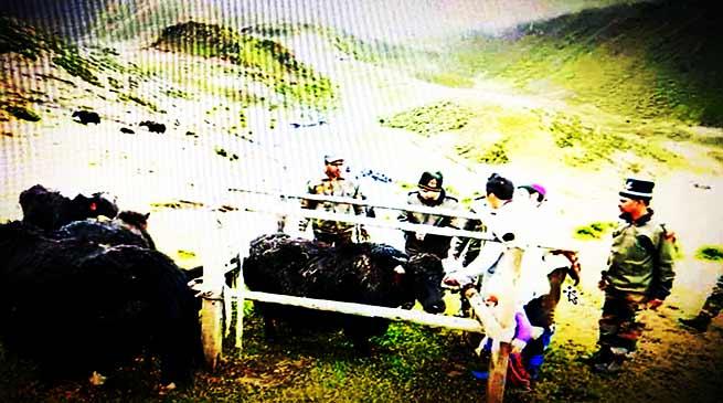 army indian camp tawang organised arunachal arunachal24 veterinary